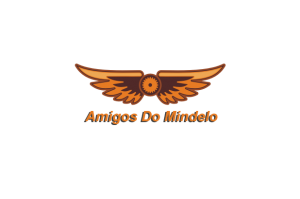 steampunk-wings-logo